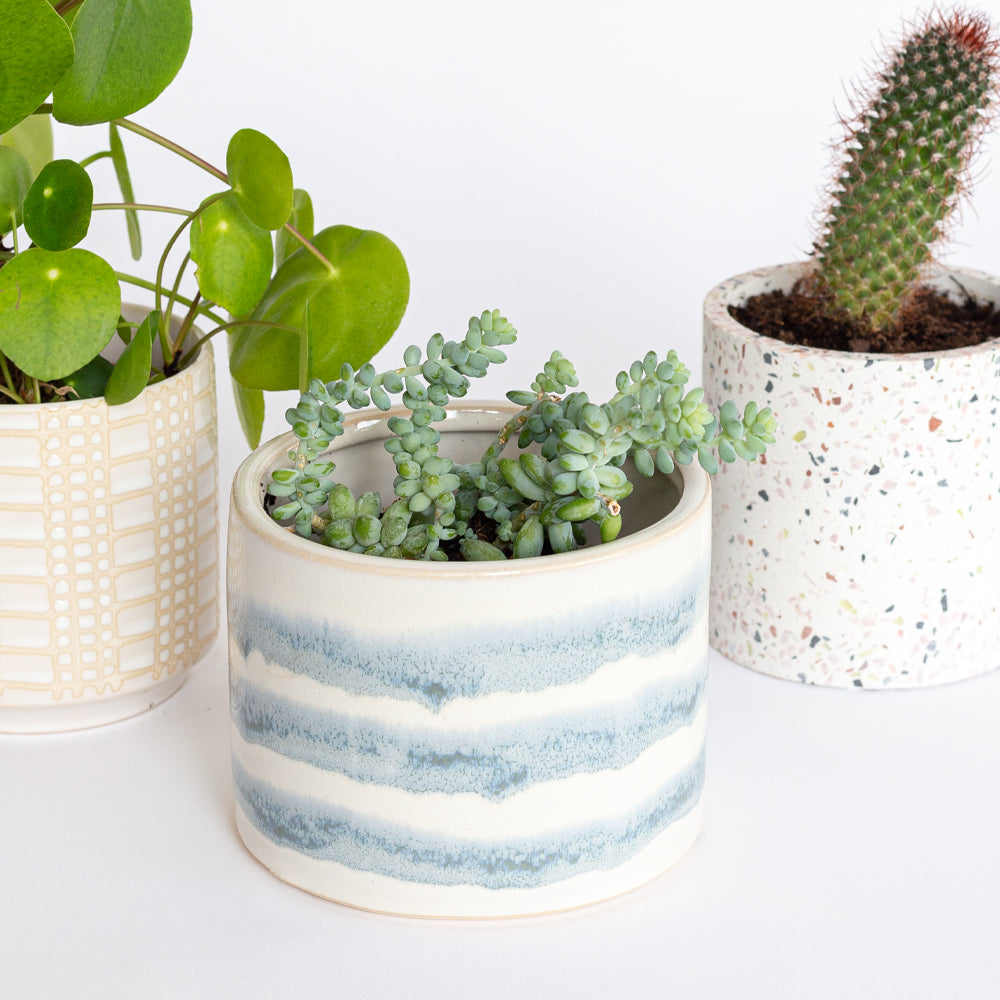 Aria Ceramic Pot
