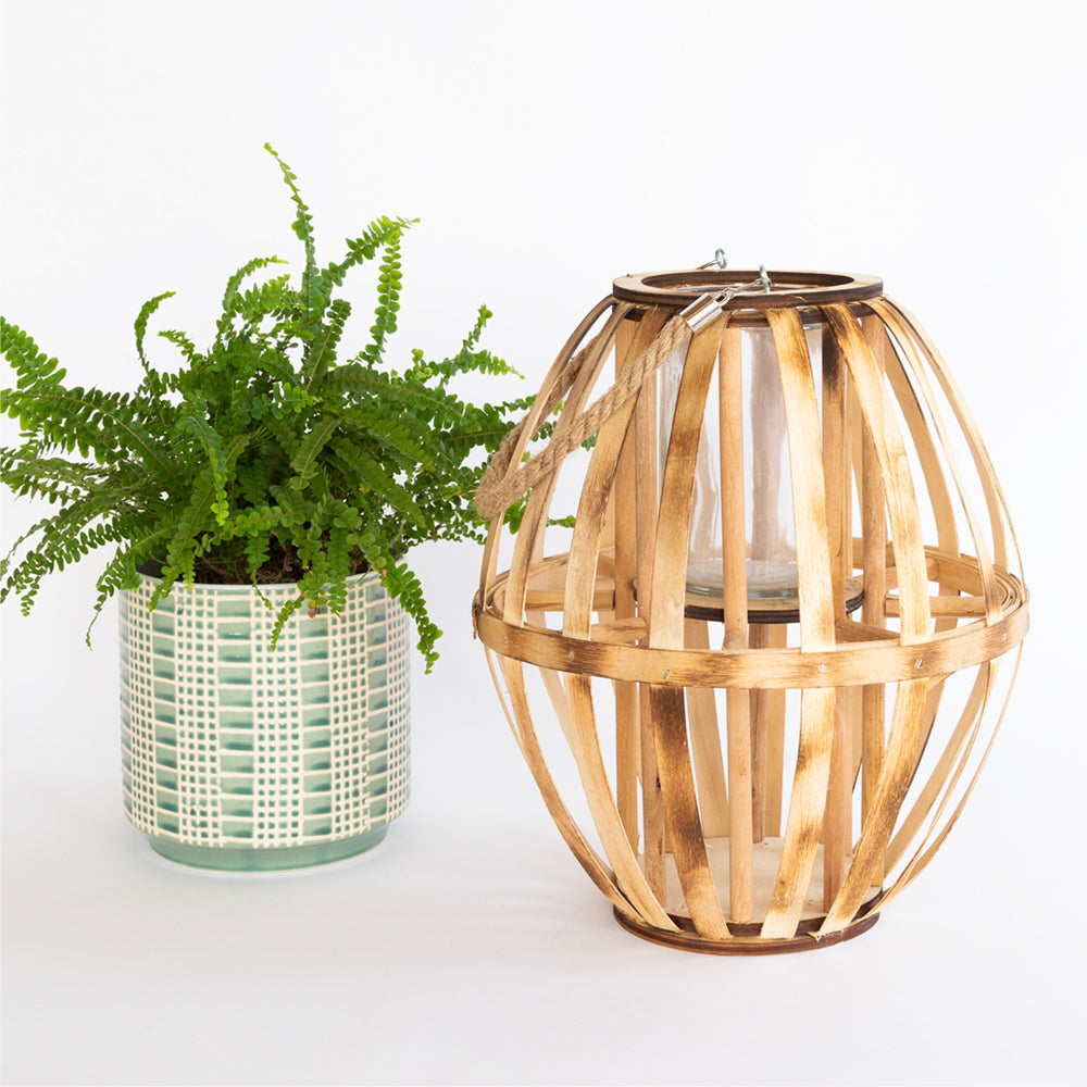 Bent Wood Votive Lantern from Tonic Living