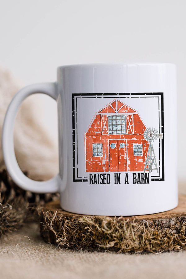 Raised In A Barn White Mug