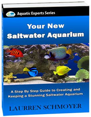 Your New Saltwater Aquarium Guide