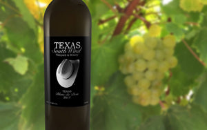Blanc du Bois 2017 (Dry) - Texas SouthWind Vineyard and Winery