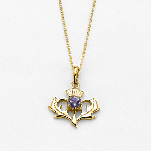 Amethyst (February Birthstone) & 9ct Yellow Gold Thistle Pendant CP7g by Ortak