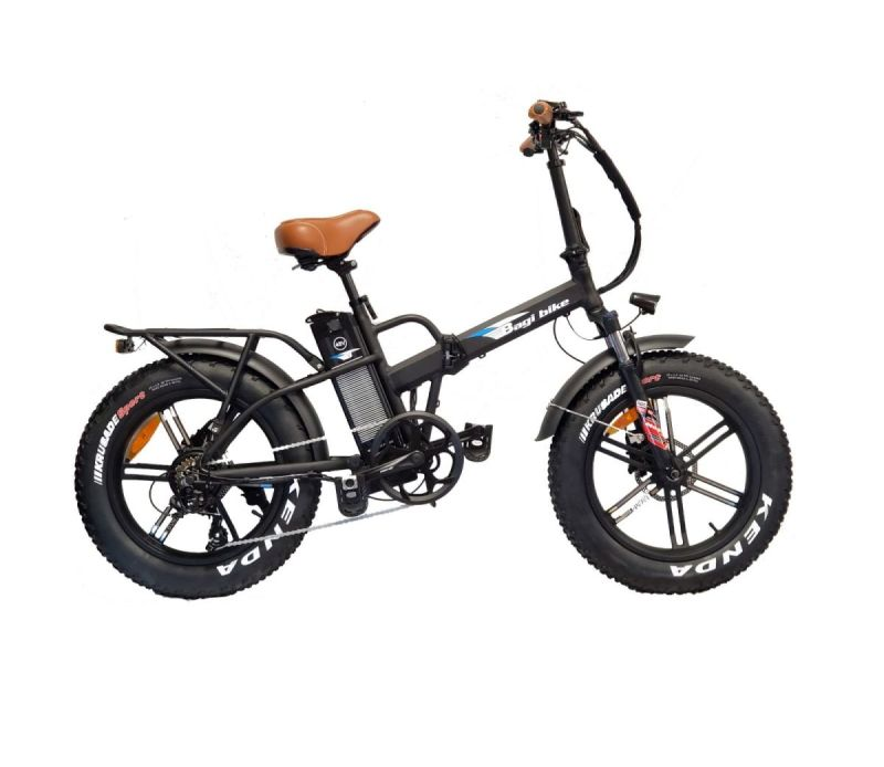 Bagi bike B26 Fat