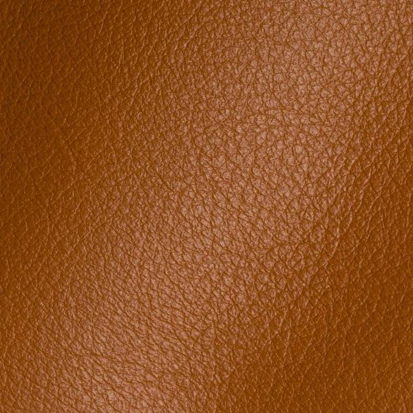 Polar Bentley Leather