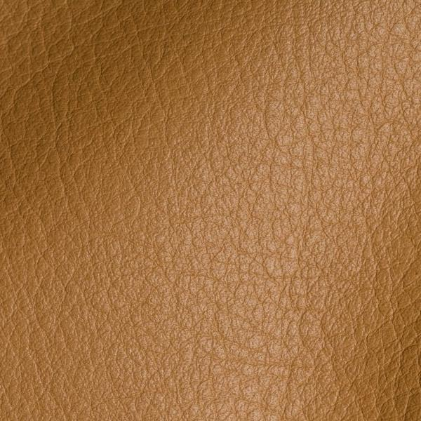 Polar Camel Leather