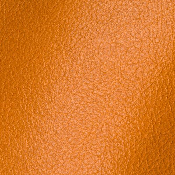 Polar Carota Leather