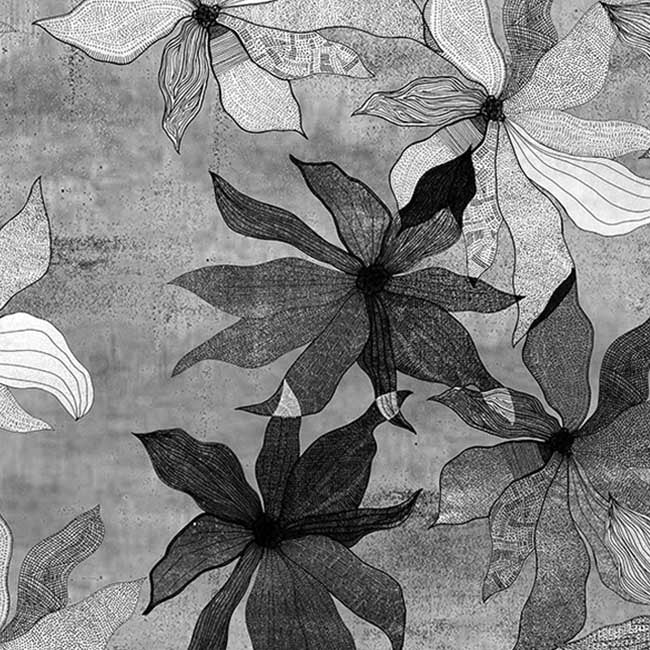 Clematis Black & White