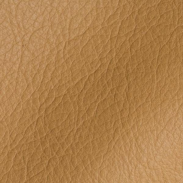Polar Corda Leather