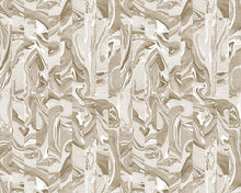 Load image into Gallery viewer, Danube Passage Wallcovering