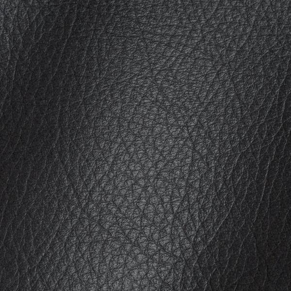 Polar Dark Grey Leather