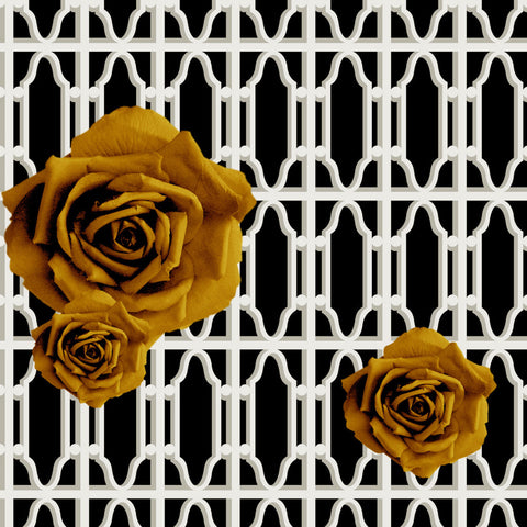 Hollywood Garden Gold on Black Commercial Grade Wallpaper
