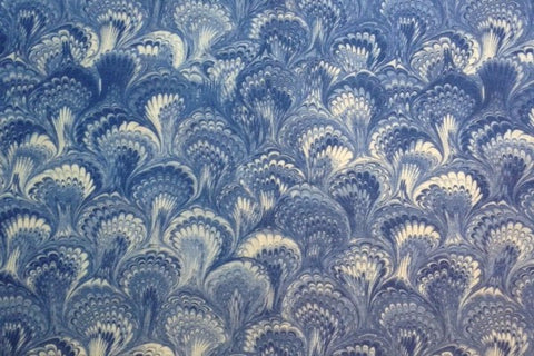Feathers Blue & White Fabric