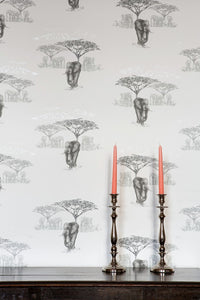 The Waterhole JTWH02  Grey Wallcovering