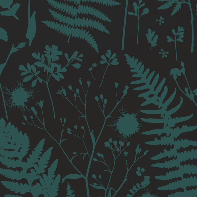 Forage - Green on Black Wallcovering