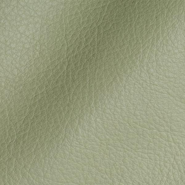 Polar Onice Leather