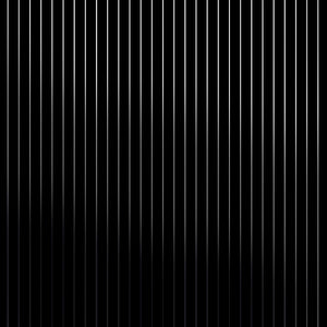 Pinstripe Black Silver Wallcovering