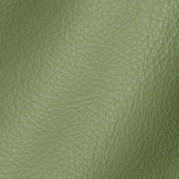 Polar Salvia Leather