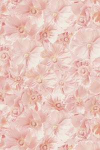 Pink Poppies Wallcovering
