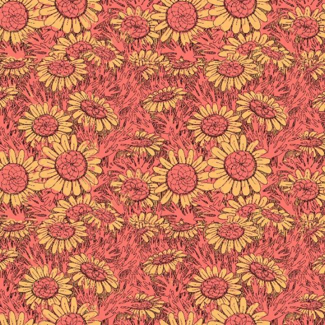 Sunflower Field in Kiss Me Pink