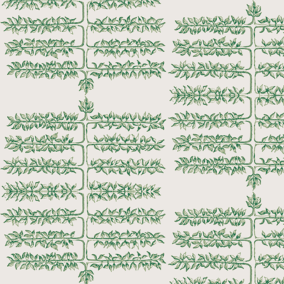Espalier Greens Wallcovering
