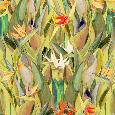 Birds Of Paradise  Green  Wallcovering