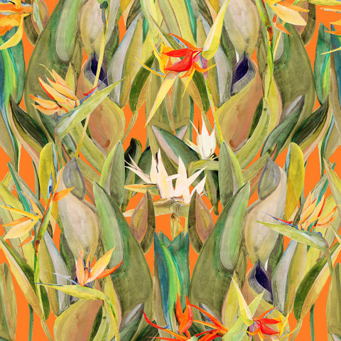 Birds Of Paradise Orange  Wallcovering