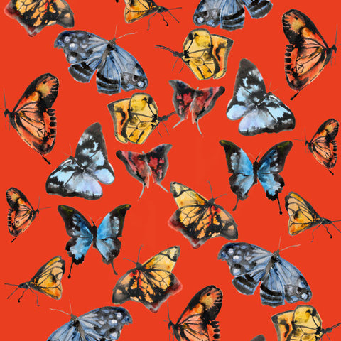 Butterflies Orange  Wallcovering
