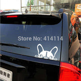 Dog Mirror Decals