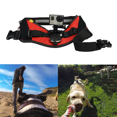 Dog Harness for Go-Pro