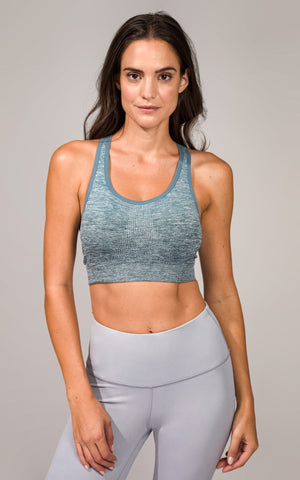 2 Pack Seamless Ombre Bra Top