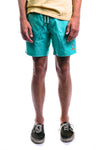 "Amphibious 17"" Swim Shorts (Aqua)"