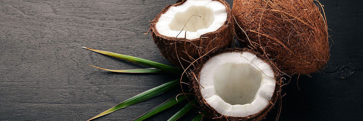 An Overview of Coconut Oil and MCTs
