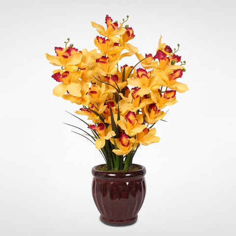 Soaring Silk Yellow Cymbidium Orchids in a Fluted, Glazed Dark Red Ceramic Pot