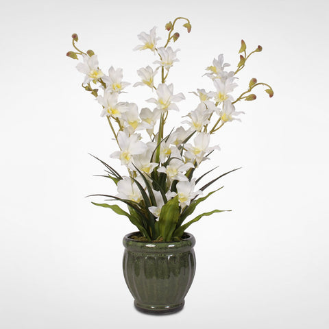 White Silk Dendrobium Orchids in a Graceful Green Glazed Ceramic Pot