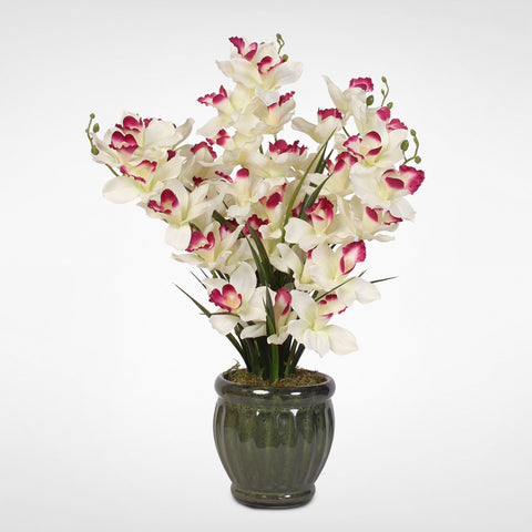 Burgundy Tipped White Silk Cymbidium Orchids and Greenery in a Green Glazed Ceramic Pot