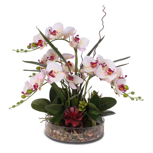 Dainty Pink Cream Silk Phalaenopsis Orchid & Artificial Succulents Arranged with Natural Pebbles in a Glass Bowl #F-11C