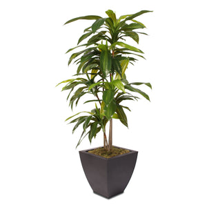 4ft Real Touch Dracaena Massangeana Tree in a Contemporary Metal Pot #177B