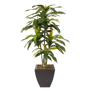 4ft Real Touch Dracaena Massangeana Tree in a Contemporary Metal Pot #T-177B