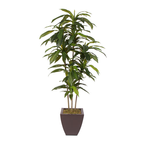 5 Feet Real Touch Artificial Dracaena Tree in a Metal Planter #177