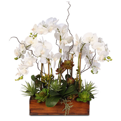 Real Touch Phalaenopsis Orchid with Succulents in a Dark Wooden Rectangular Container #20C