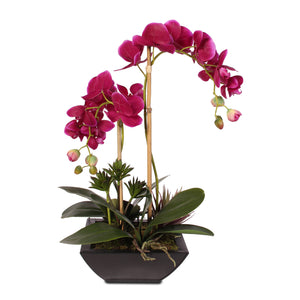 Violet Color Real Touch Phalaenopsis Orchid & Artificial Succulents in a Contemporary Metal Pot #F-23D