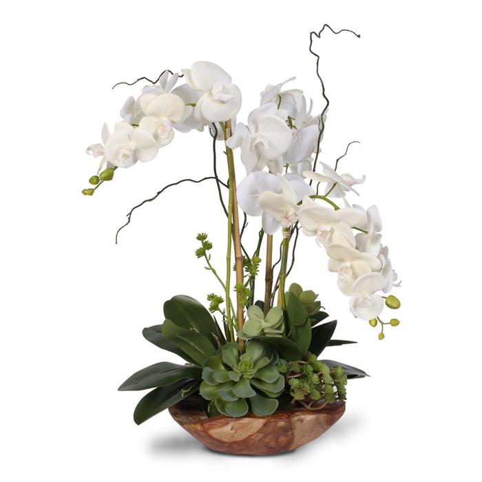 Real Touch Phalaenopsis Silk Orchid with Curly Willow in Natural Teak Wood Bowl #40C