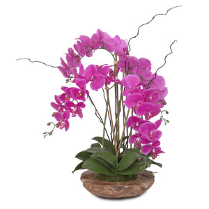 Real Touch Phalaenopsis Silk Orchid with Curly Willow and Succulents in Teak Wood Bowl #43A