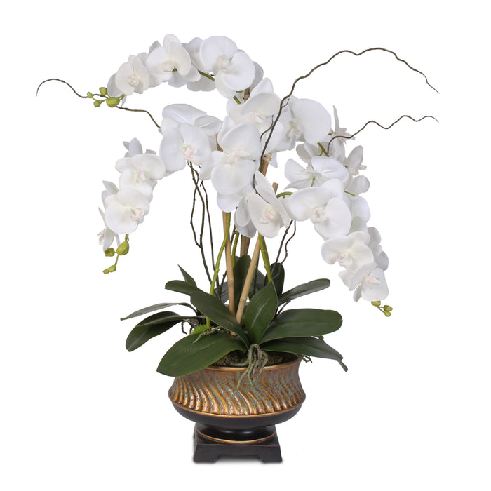 "Parisian Chic White Real Touch Orchid Nestled in ""Gilded"" Vase #43W"