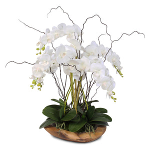 Real Touch 5-Stem Phalaenopsis Silk Orchids in a Natural Teak Bowl #59