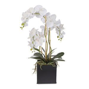 Real Touch Triple-Stem Phalaenopsis Silk Orchid in a Metal Container #6