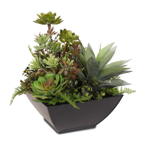 Succulent Variety in a Metal Container #61