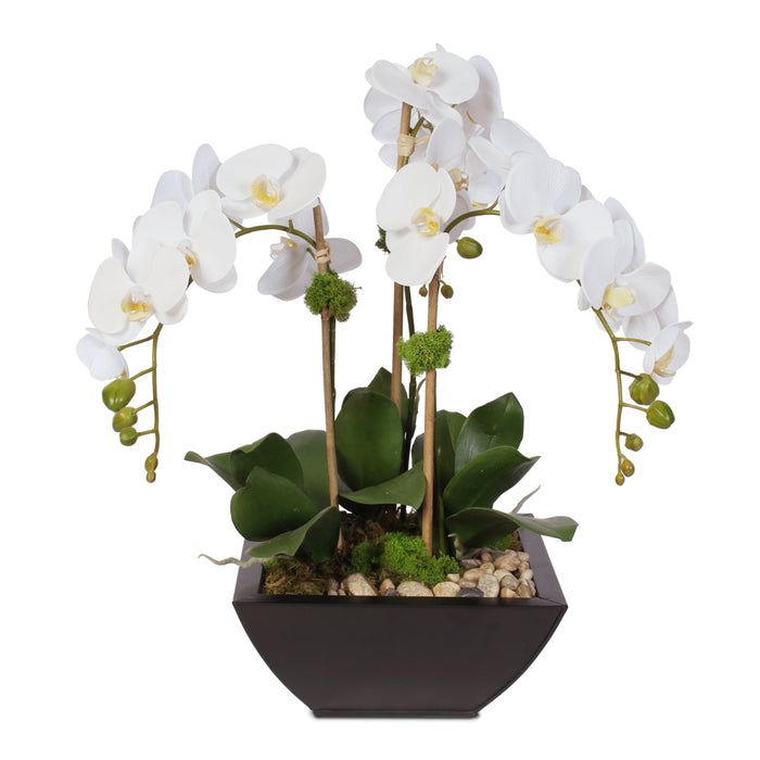 Real Touch Arrangement of White Phalaenopsis Orchid & Artificial Succulents in a Contemporary Metal Pot #F-6H