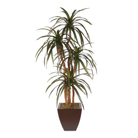 "5'5"" Silk Yucca Tree with Natural Wood Trunks in Metal Pot #83B"