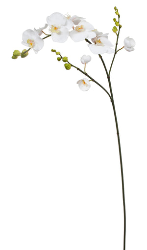 "43"" White Phalaenopsis Orchid Spray #95270-WW"